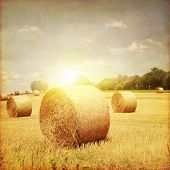 stock photo of hay bale  - Agricultural field with hay bales at sunset in grunge and retro style - JPG