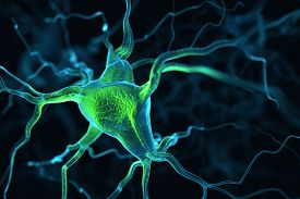 foto of neuron  - Neurons abstract background - JPG