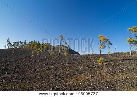 Inland Gran Canaria, Montanon Negro