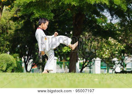 Boy Practice Taekwondo