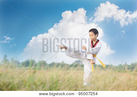 Asian Boy Practice Taekwondo