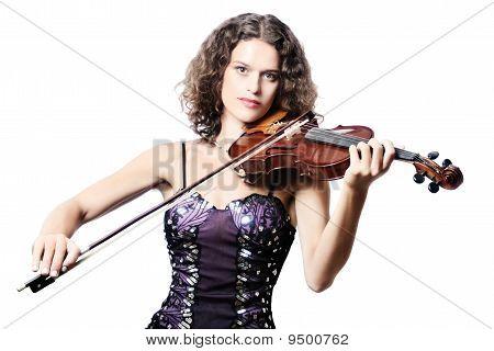 Violinist Professional