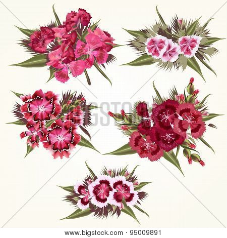 Set Of Vector  Pink Flowers In Detailed And Realistic Style