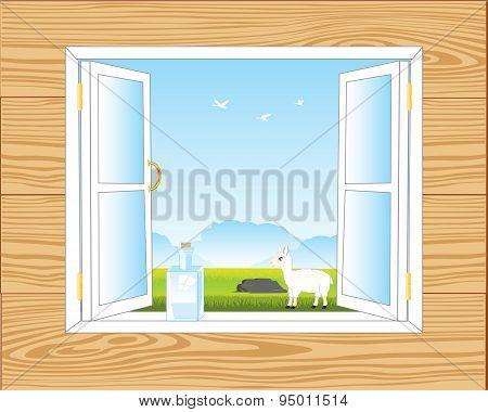 Window in room