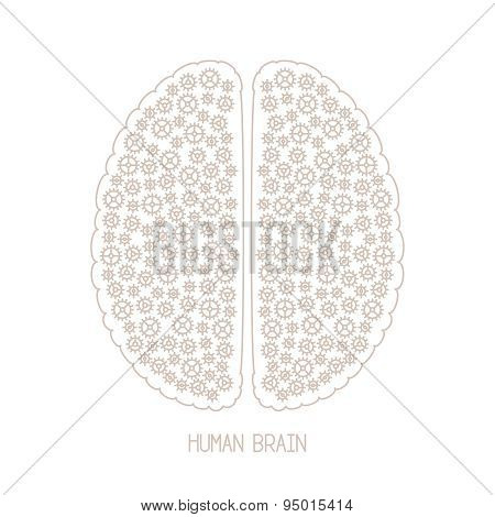 Human Brain And Creativity Vector Concept In Mono Thin Line Style