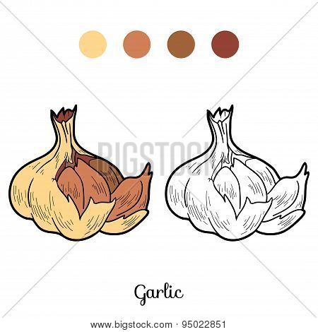 Coloring Book: Fruits And Vegetables (garlic)