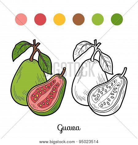 Coloring Book: Fruits And Vegetables (guava)