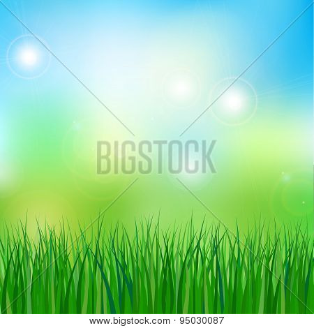 vector illustration of meadow