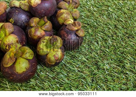Mangosteen On Grass Background