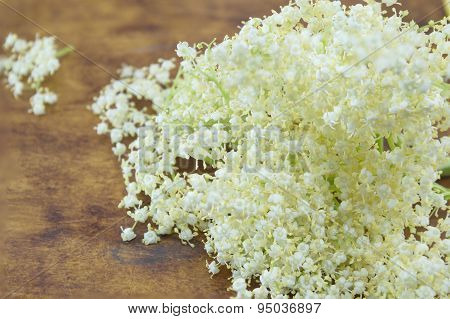 Fresh Elderflower Bouquet On A Wooden Table