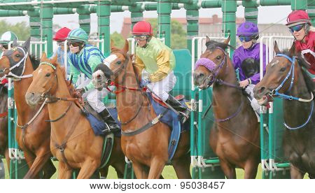 The Start In The Horse Race