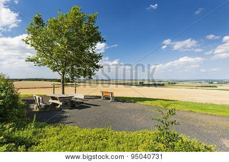 Benches And Tree, Germany