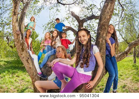 Fisheye view of children on the tree benches