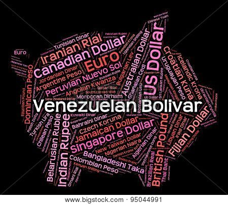 Venezuelan Bolivar Means Foreign Currency And Coinage