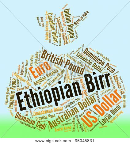 Ethiopian Birr Represents Foreign Exchange And Birrs