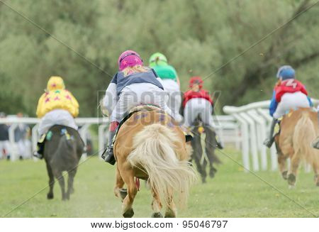 Rear View Of Five Racing Ponys