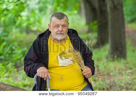 Outdoor portrait of senior man under tree shadow