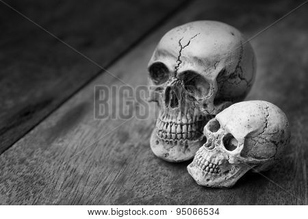 Human Skull On Old Wood Background.