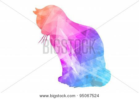 Colorful Polygonal  Cat
