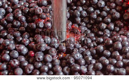 Berries Of Bilberry And Mixer