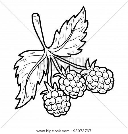 Coloring Book: Fruits And Vegetables (raspberry)