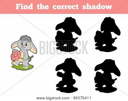 Find The Correct Shadow (rabbit And Flower)