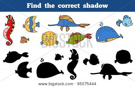 Find The Correct Shadow (sea Life, Fish, Sea Horse, Whale)