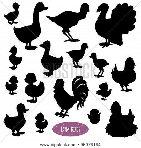 Set Of Silhouettes Of Birds On The Farm (chicken, Duck, Turkey, Goose)
