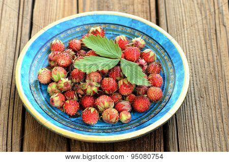 Wild Strawberries Fragaria Viridis In Blue Plate With Green Strawberry Leaf
