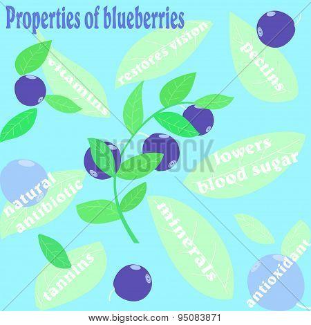 Properties of blueberries