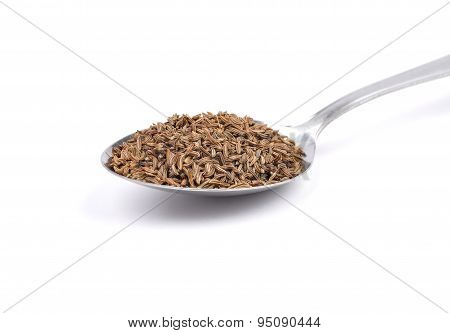 Caraway Seeds On Spoon