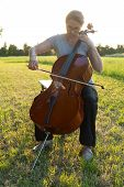 foto of cello  - a woman playing the cello on the meadow at sunset - JPG