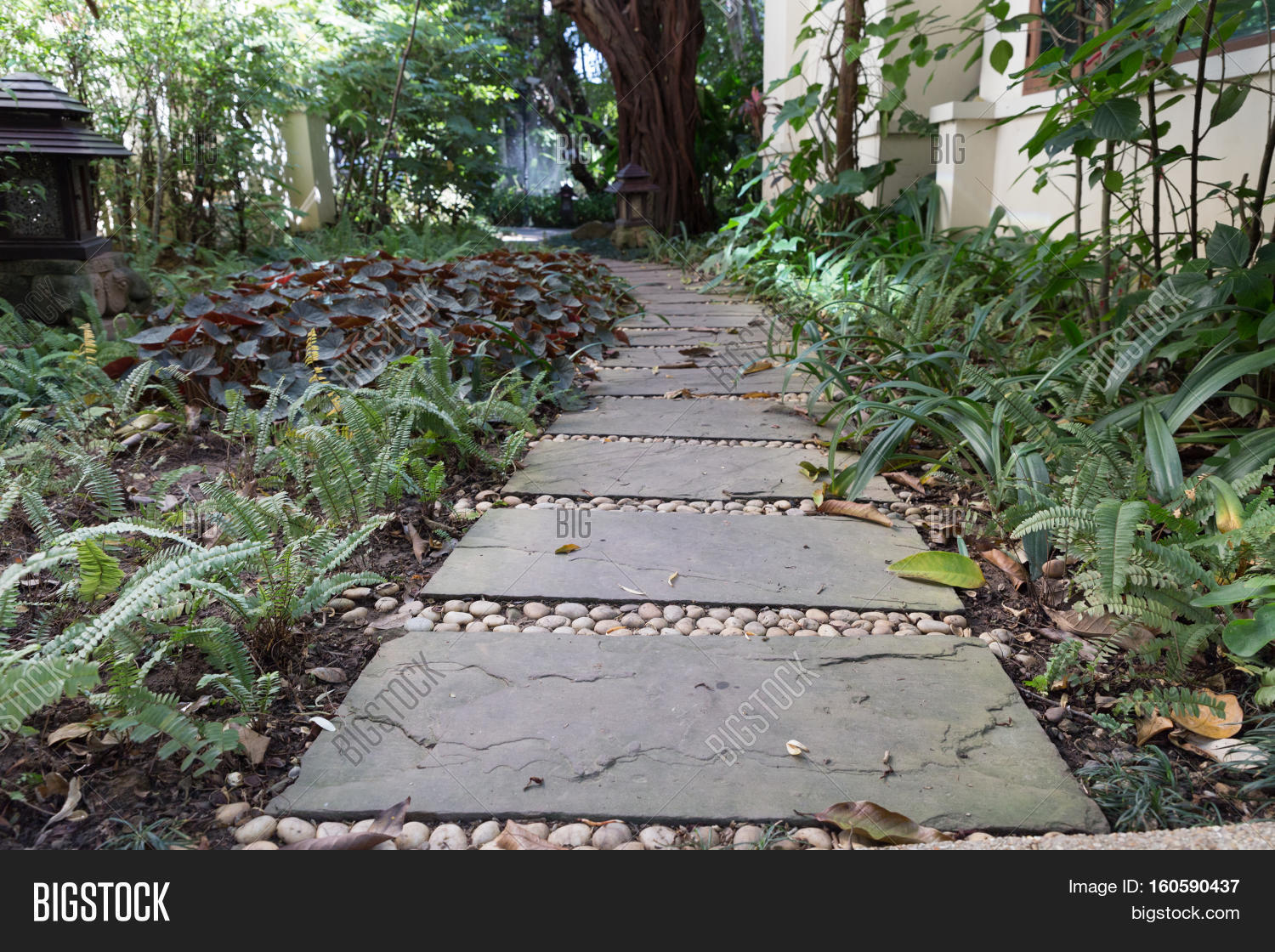 Free Images : landscape, pathway, outdoor, rock, wood, track ...