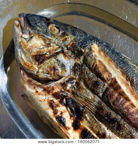 Grilled sea bass fish on the metal plate Mediterranean cuisine Attica Greece
