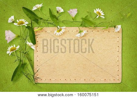 Bindweed and daisy flowers with card on green paper background