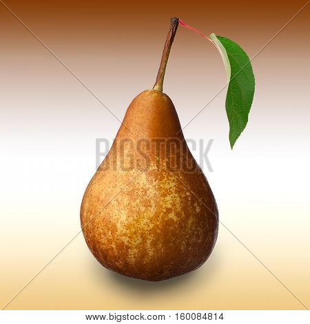 Close-up image of pear and leaf studio isolated against background