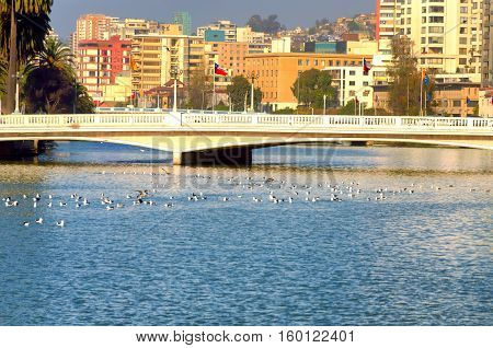 Modern buildings provide a colorful backdrop for a low bridge in Vina del Mar Chile
