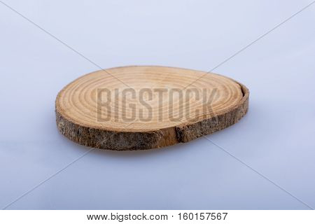 Wood Log Cut In Round Thin Pieces On White Background