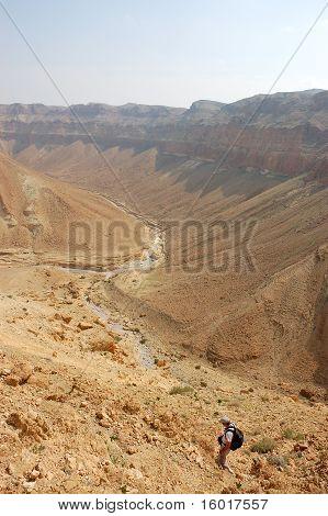 Desert hike.