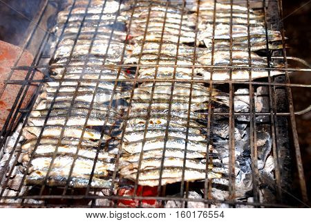 Delicious anchovy fish cooked on the grill