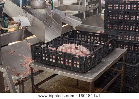 factory for the production of chicken meat. technological process.
