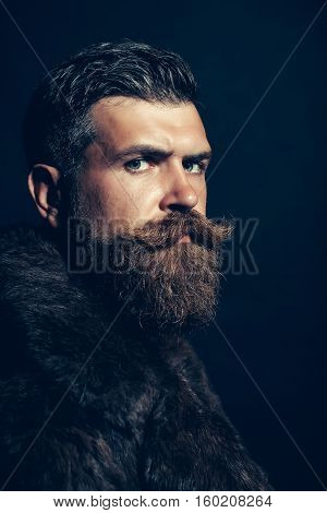 Bearded Man Hipster In Fur Coat
