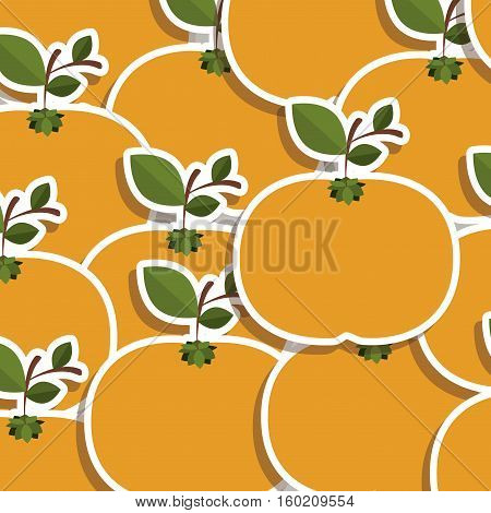 silhouette colorful pattern of tangerines fruit with stem and leafs vector illustration