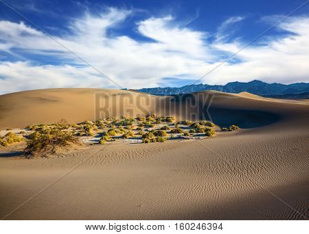 The windy morning in the desert. Gentle ripples on sand dunes. Hot autumn in Death Valley, California