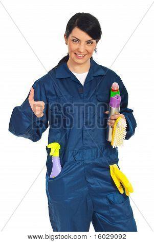 Exitosa mujer limpieza del trabajador