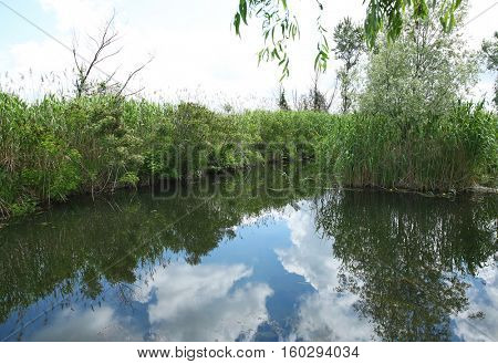 Sky reflected in the lake