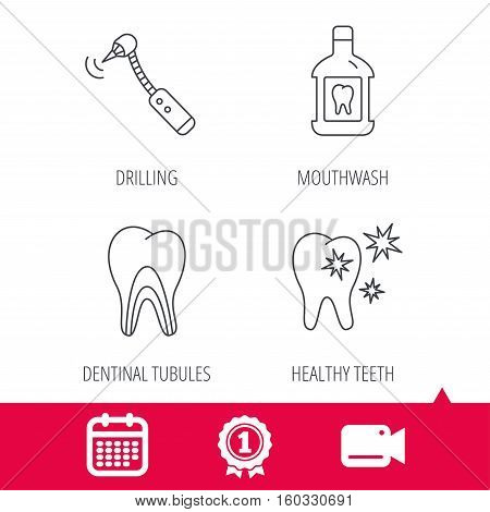Achievement and video cam signs. Tooth, mouthwash and dentinal tubules icons. Healthy teeth, dentinal tubules linear sign. Calendar icon. Vector