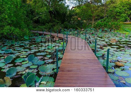 wood bridge For the Nature Education in garden