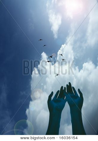 Hands gesture toward a flock of birds in flight
