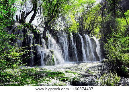 Waterfall With Crystal Clear Water Among Green Woods, Jiuzhaigou